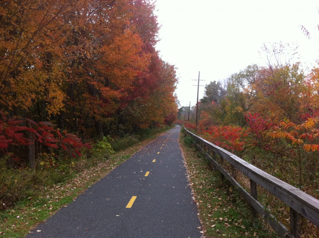 Another view of the bike path to the studio in autumn.